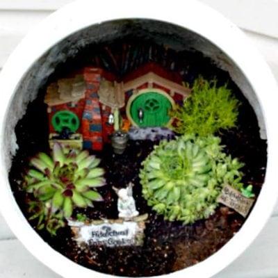 Garden Pot Fairy Garden