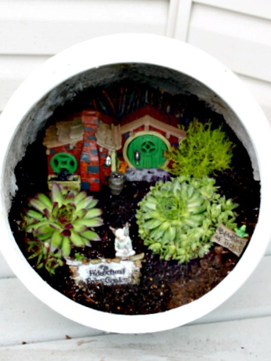 A outdoor fairy garden in a tilted garden plot. Great for sunny patios