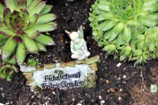 Outdoor fairy garden in a container. Great for small yards or balconies