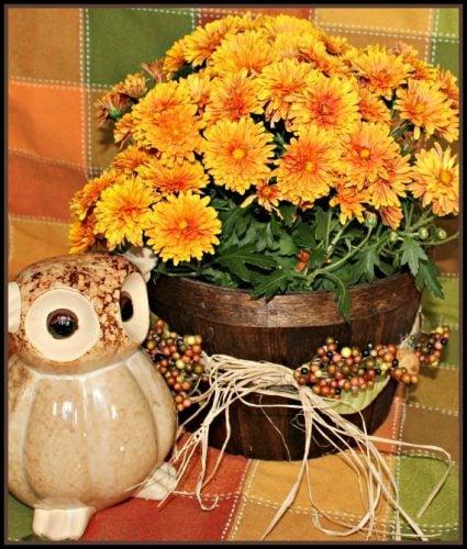 Basket, Fall, DIY, Home Decor, Staining