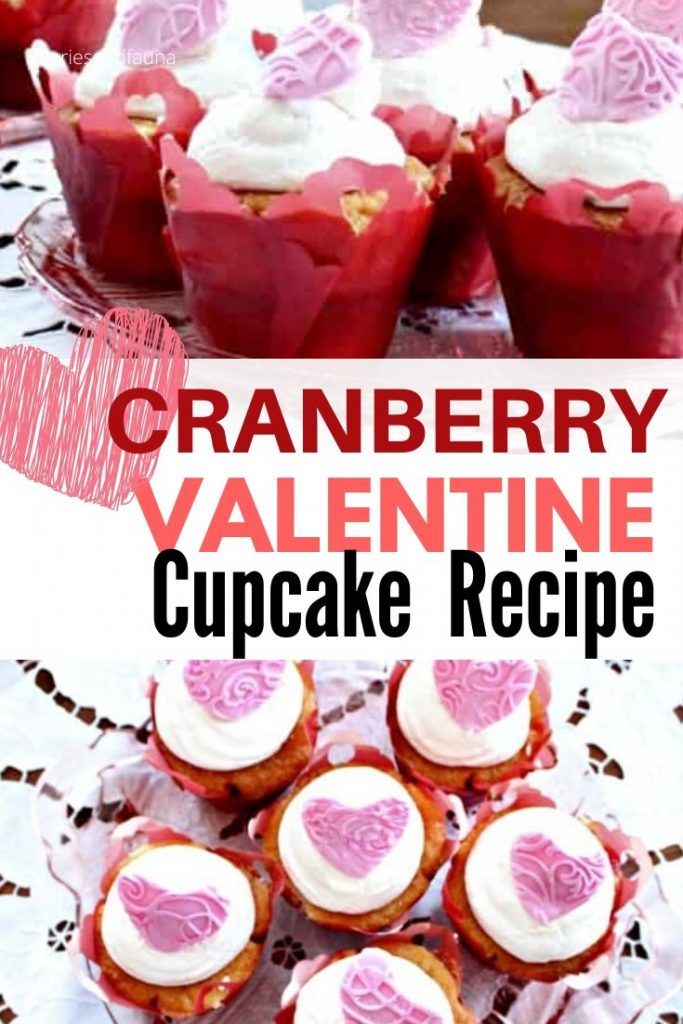 Easy vanilla cupcakes filled with cranberries and gran marnier. A special boozy Valentines dessert.