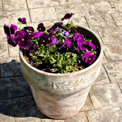 DIY Dry Brush Flower Pot Painting