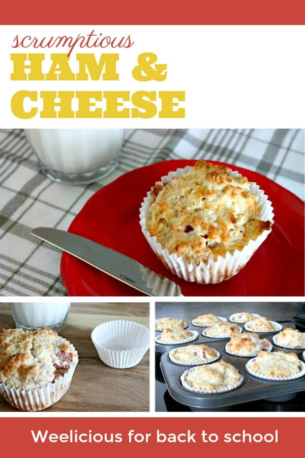 Ham and cheese muffins, a savory muffin that's really good for back to school lunches.