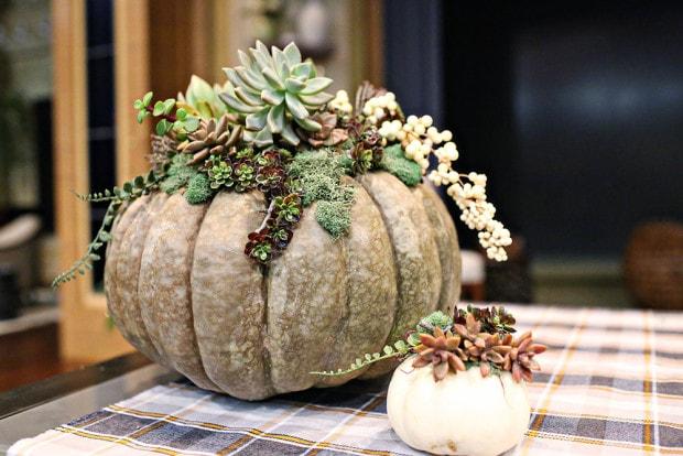 Elegant fall decorating idea, fall pumpkins with succulents