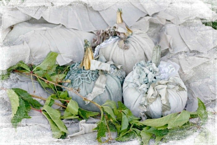 Gorgeously elegant fall pumpkins with fabric and brush gold stems