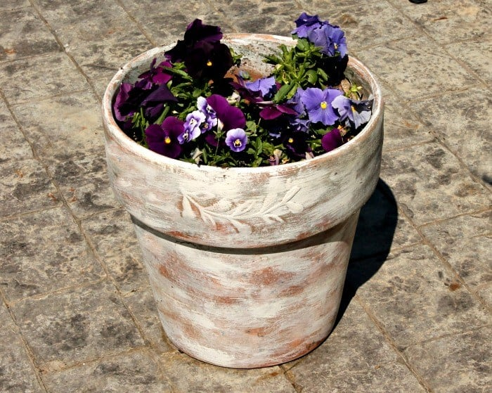 Refurbished terra cotta pot, decorated with dry brush white paint.
