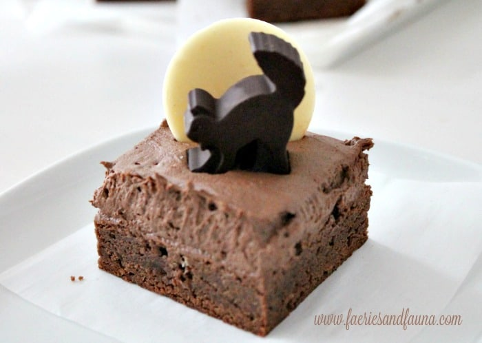 Halloween snack idea a black cat on a chocolate brownie.
