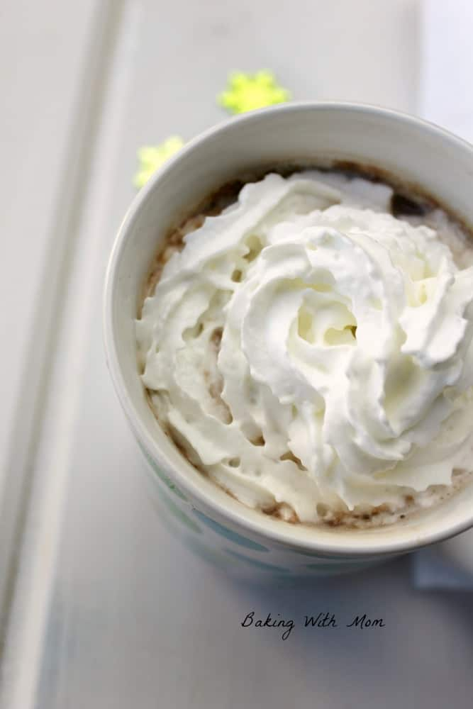 Easy homemade hot chocolate in a mug with a large swirl of whipped cream.