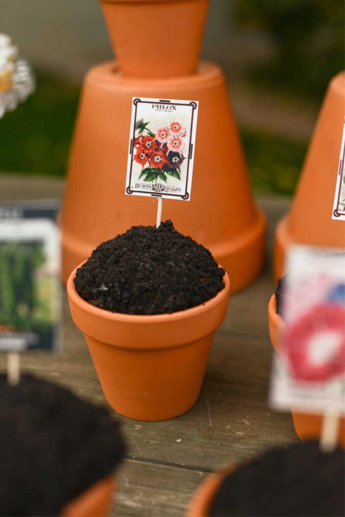 Spring garden cupcake idea with free printable seed packages.