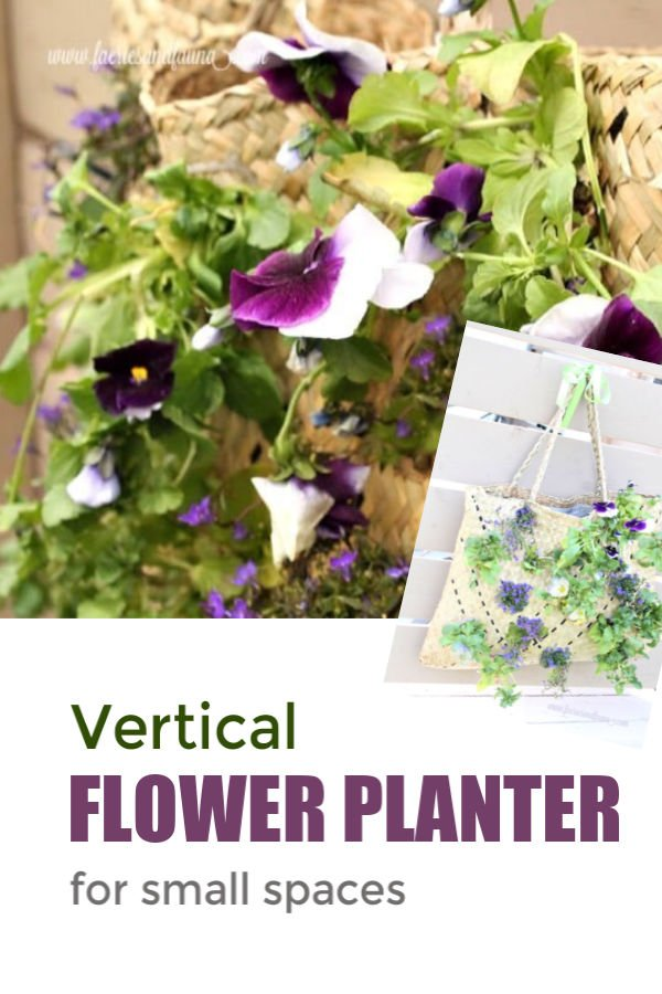 How to make a vertical garden using a shopping bag and small plants
