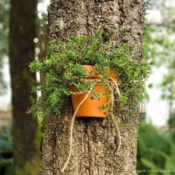 Pottery Craft how to turn terracotta pots into tree planters