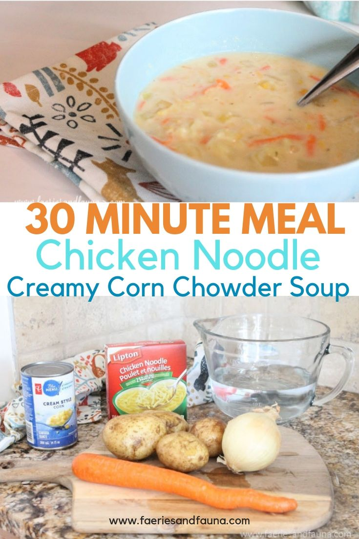 30 Minute Meal recipe for Fall. Chicken noodle slow cooker soup.