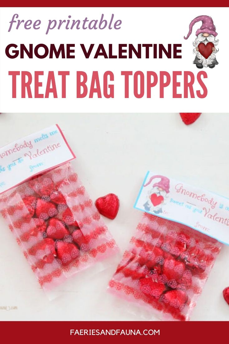 Free printable Valentine treat bag toppers with Gnomes for Valentines Day. A fun DIY Valentine idea for classroom Valentines parties.