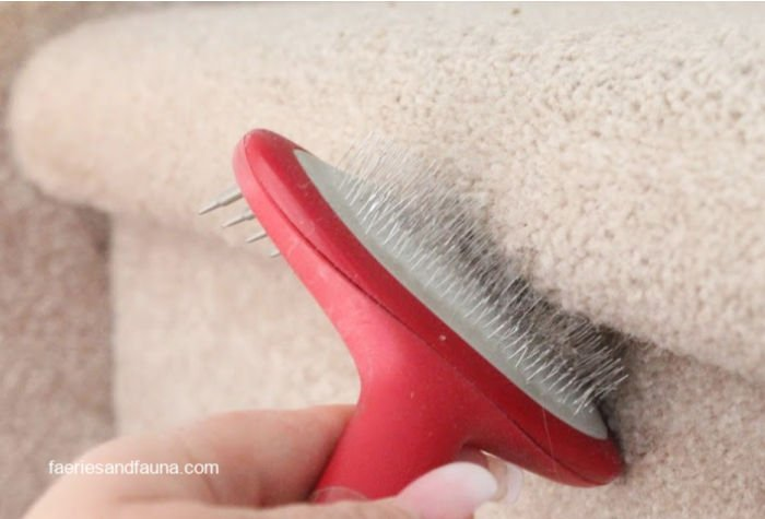 How to remove dog hair from difficult areas of carpeted stairs.