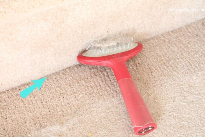 A picture showing the before and after of how to clean dog hair out of your carpet.
