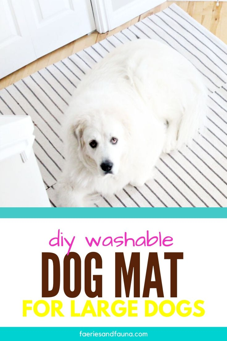 Large DIY dog mat for the front door.