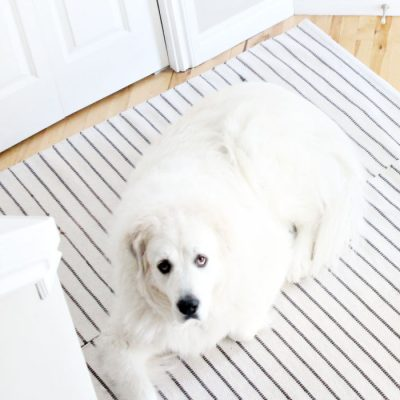How to Make a Washable Large DIY Dog Mat