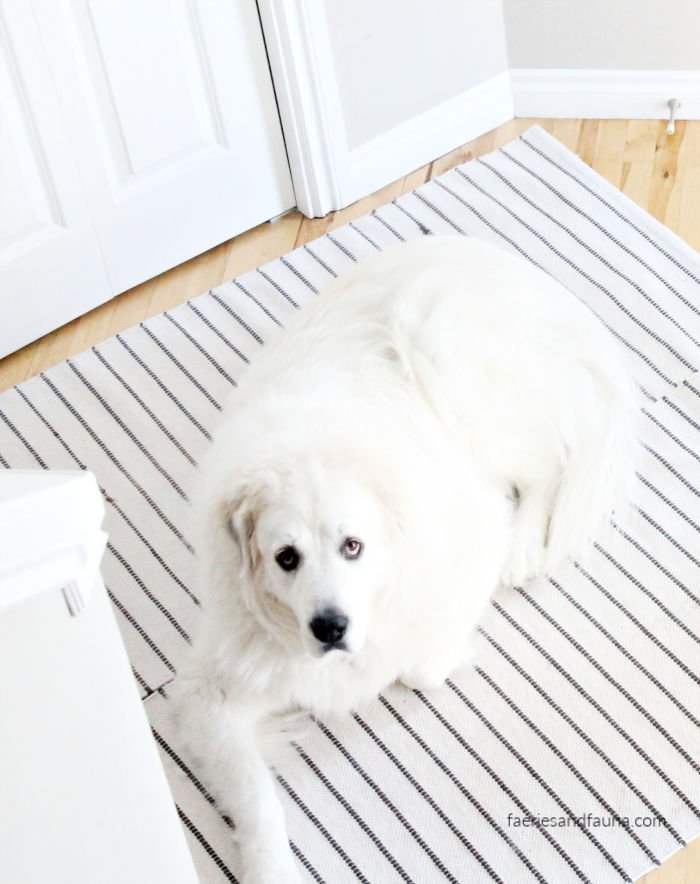 Large DIY dog mat for hardwood floors and pets.