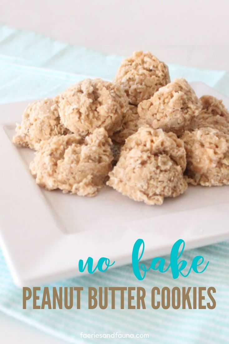 A no bake cookie recipe with peanut butter, coconut and oatmeal.