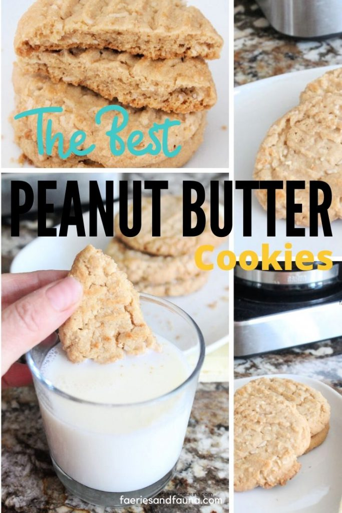 Chewy peanut butter cookies with lots of peanut butter flavour.