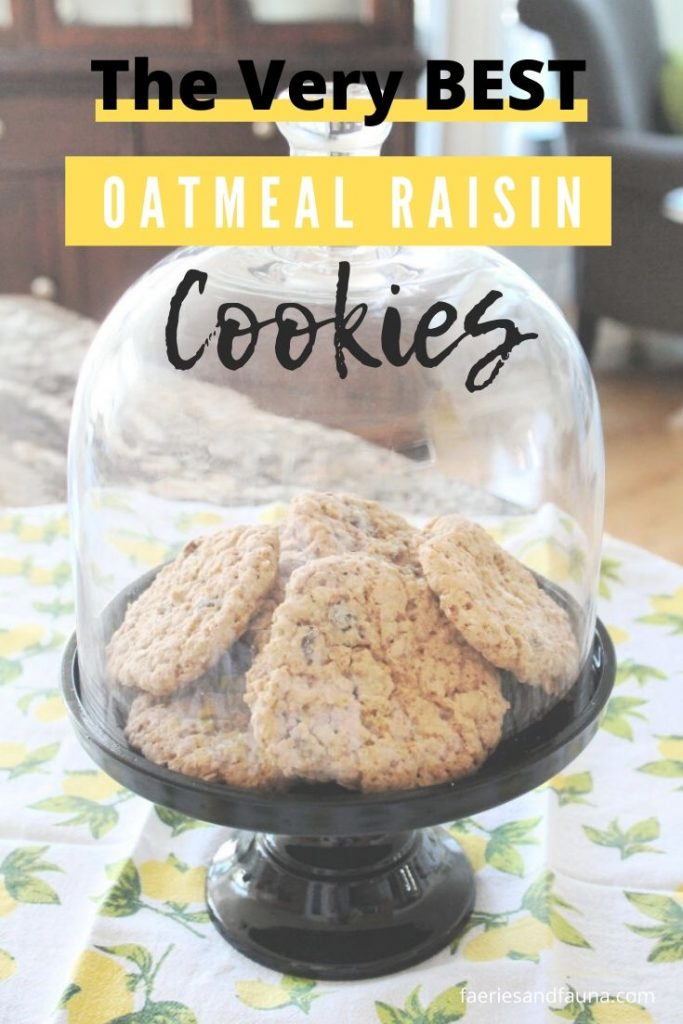 A tray of moist and chewy from scratch oatmeal raisin cookies.