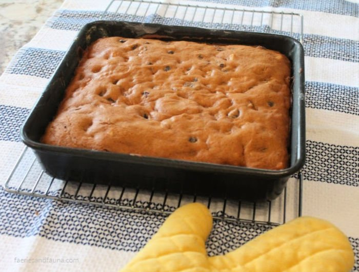 A from scratch classic tomato soup cake warm from the oven without icing yet.