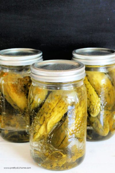 Three quart jars of canned homemade dill pickles.