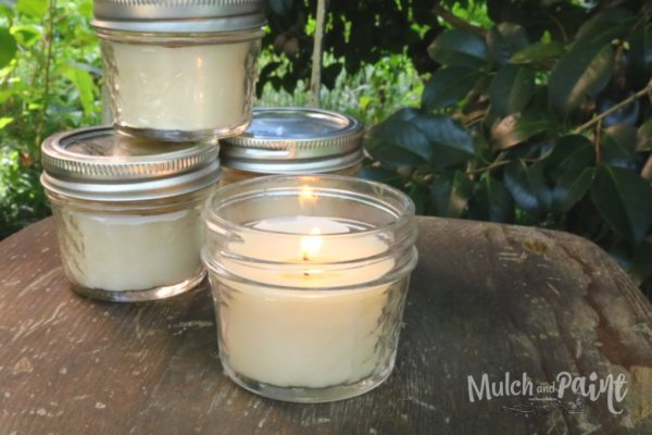 Handmade Citronella Candles in mason jars, there are four candles one is open and lit. There is greenery in the background.